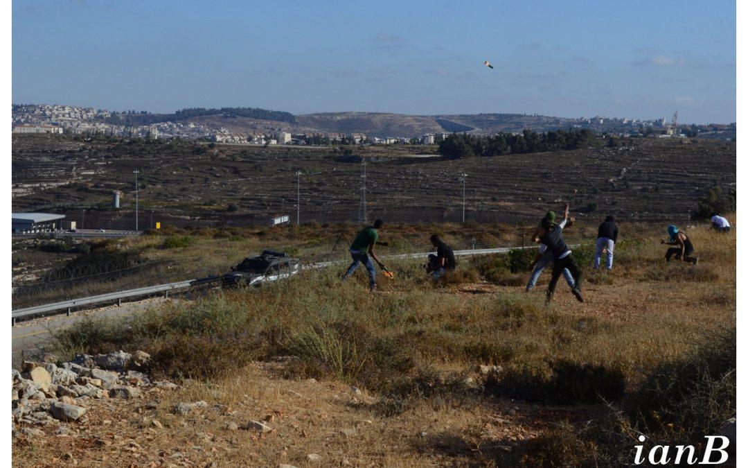 Les forces d'occupation de la Palestine n'aiment pas les témoin – 2014